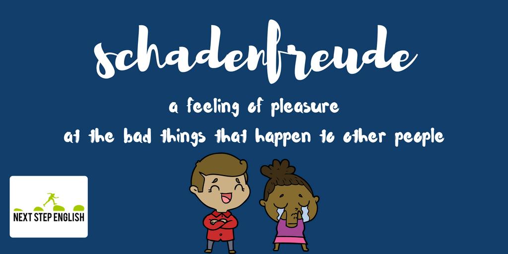 define schadenfreude