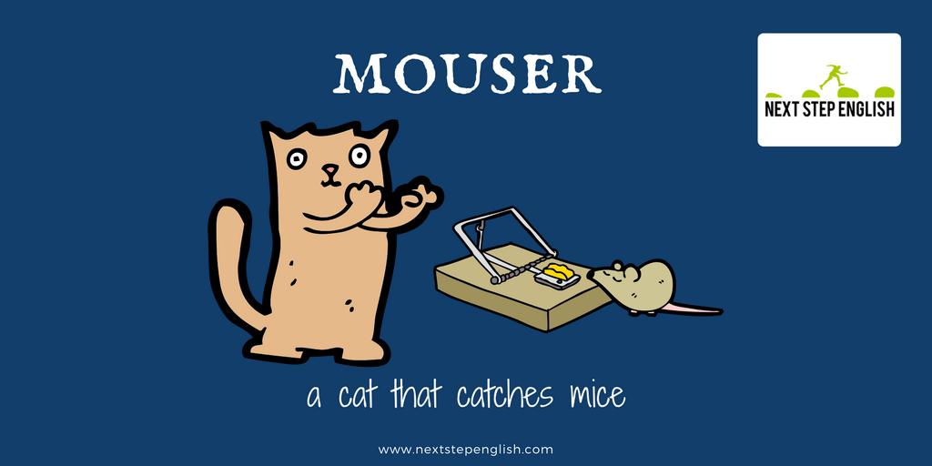 define mouser