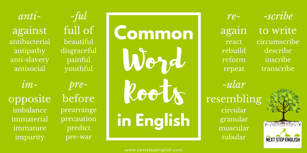 English-vocabulary-tips-word-roots