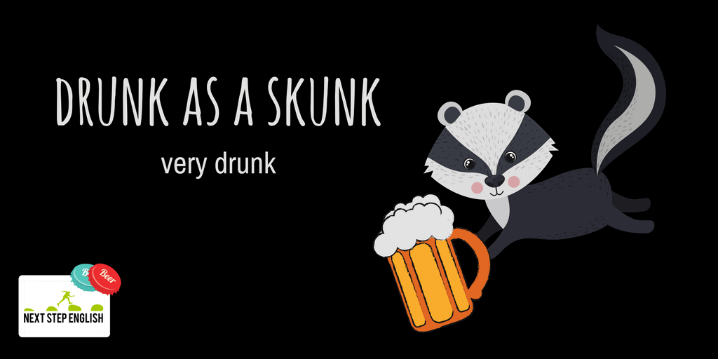 10-drunk-as-a-skunk-animal-simile-Next-Step-English