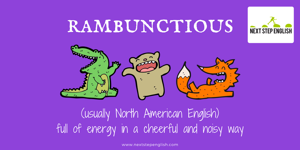 14-advanced-English-vocabulary-words-St-Francis-Assisi-rambunctious-meaning