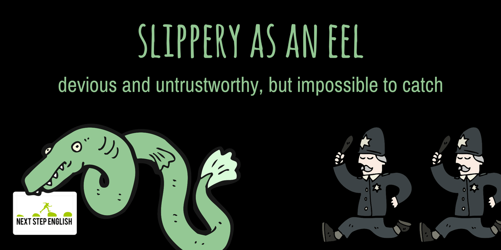 7-slippery-as-an-eel-animal-simile-Next-Step-English