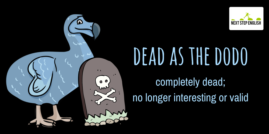 8-dead-as-the-dodo-animal-simile-Next-Step-English