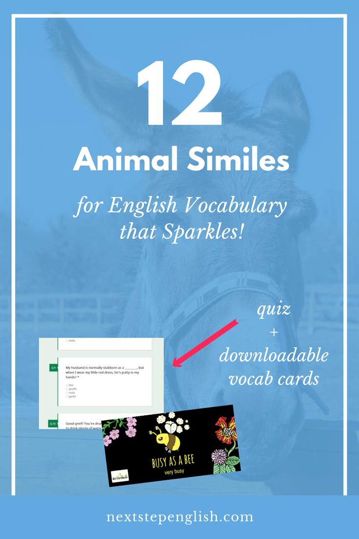English-Animal-Similes-Fluent-English-Vocabulary-Next-Step-English