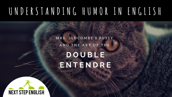 Understanding Humor in English: Mrs. Slocombe's Pussy and the Art of the Double Entendre