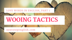 Love Words in English, Part 7: Advanced English Vocab for Romantic Valentine's Day Ideas