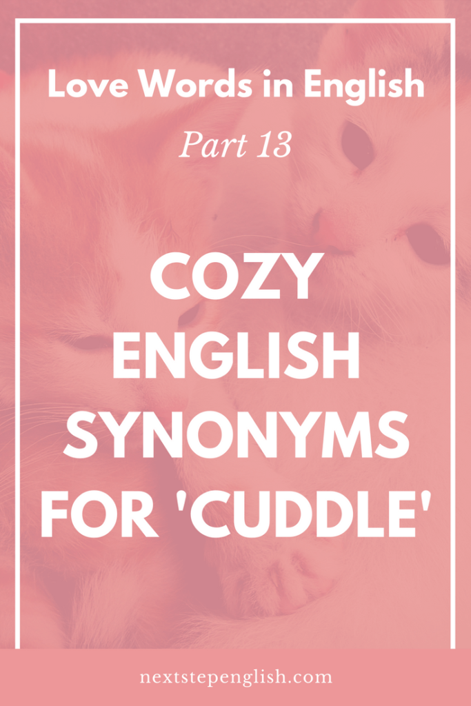 Love Words in English, Part 13: Cozy English Synonyms for