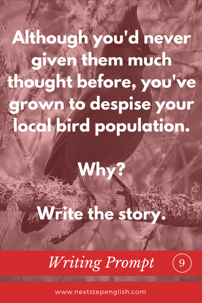 bird-writing-prompts-creative-writing-ideas-ESL-9-Next-Step-English