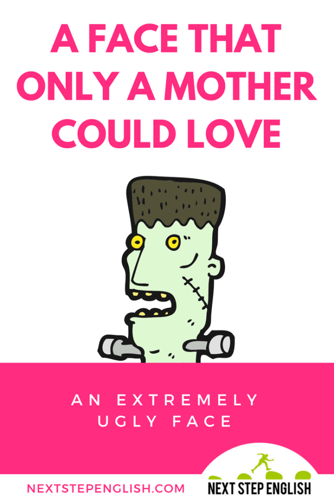 mother-idioms-mom-idioms-FACE-THAT-ONLY-A-MOTHER-COULD-LOVE-Next-Step-English