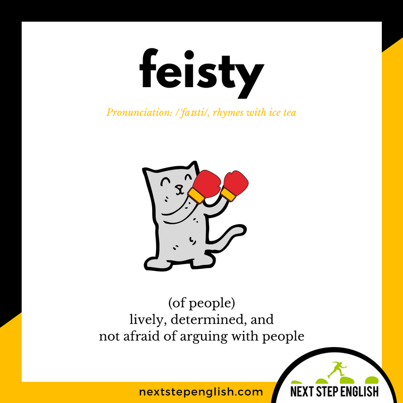 10-define-FEISTY-meaning-Next-Step-English