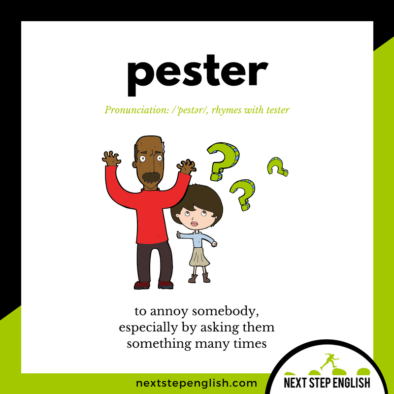 English-vocabulary-visual-define-PESTER-meaning-Next-Step-English