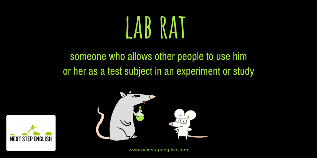 idioms-with-meanings-and-examples-lab-rat-Next-Step-English