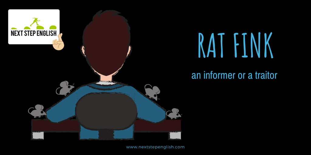 Mouse + Rat Idioms: 9 Great Idioms with Meanings and