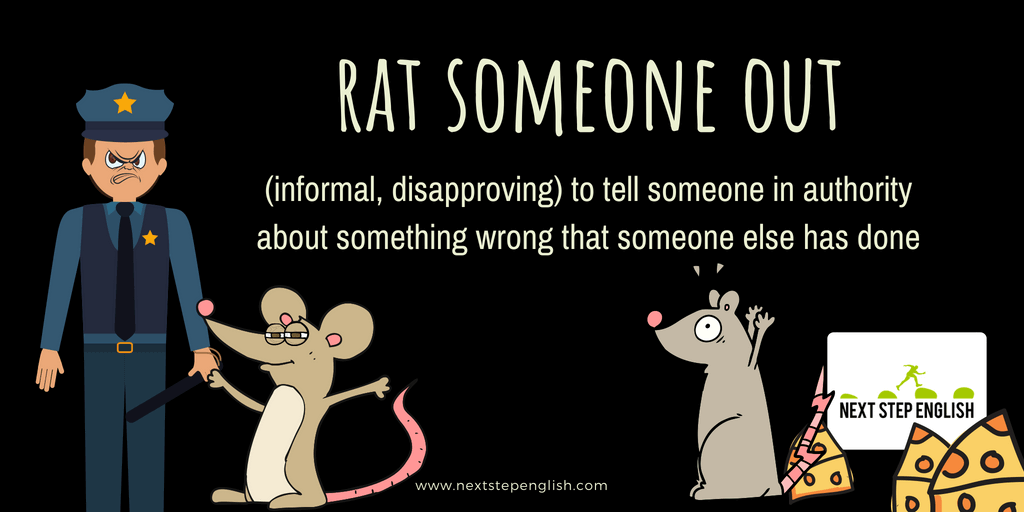 idioms-with-meanings-and-examples-rat-someone-out-Next-Step-English