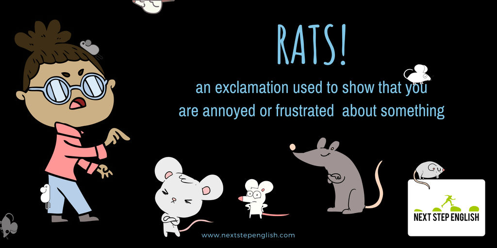idioms-with-meanings-and-examples-rats-exclamation-Next-Step-English