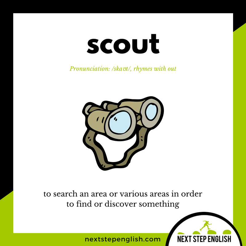 English-vocabulary-define-SCOUT-meaning-Next-Step-English