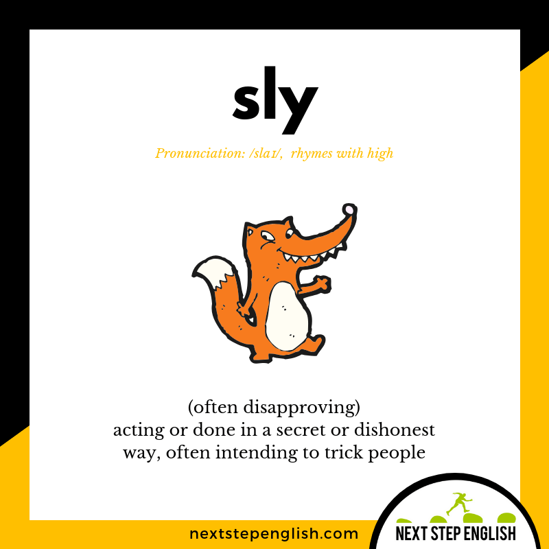 English-vocabulary-define-SLY-meaning-Next-Step-English
