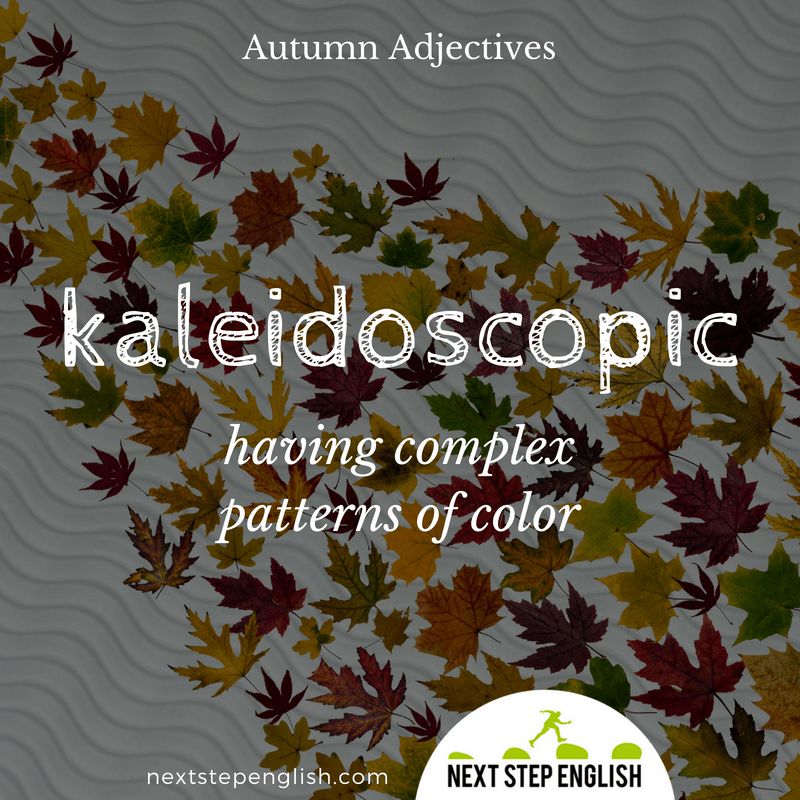 10-fall-words-autumn-adjectives-define-KALEIDOSCOPIC-meaning-Next-Step-English