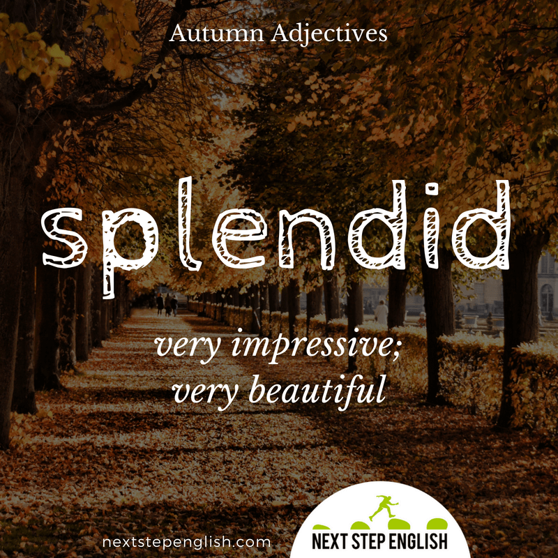 11-fall-words-autumn-adjectives-define-SPLENDID-meaning-Next-Step-English