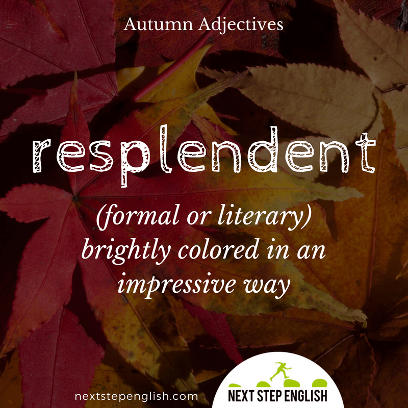 13-fall-words-autumn-adjectives-define-RESPLENDENT-meaning-Next-Step-English