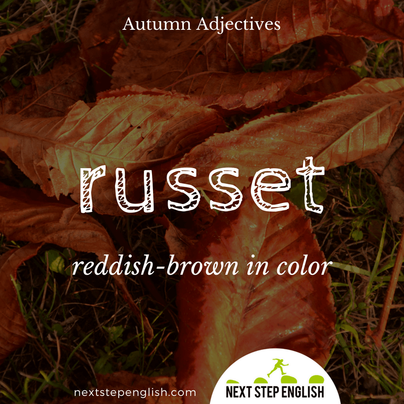 14-fall-words-autumn-adjectives-define-RUSSET-meaning-Next-Step-English