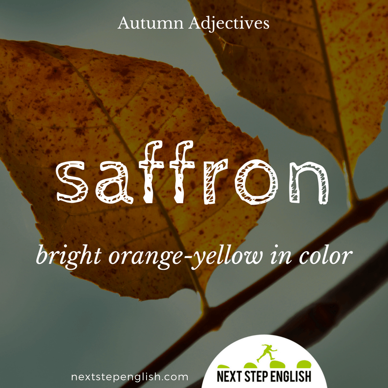 15-fall-words-autumn-adjectives-define-SAFFRON-meaning-Next-Step-English