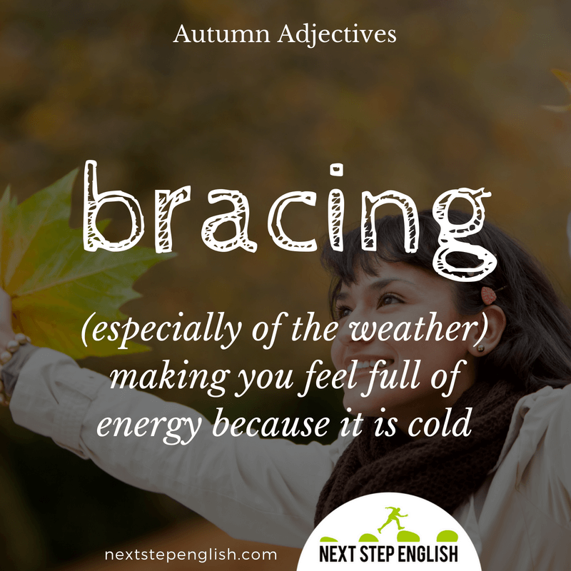 3-fall-words-autumn-adjectives-define-BRACING-meaning-Next-Step-English