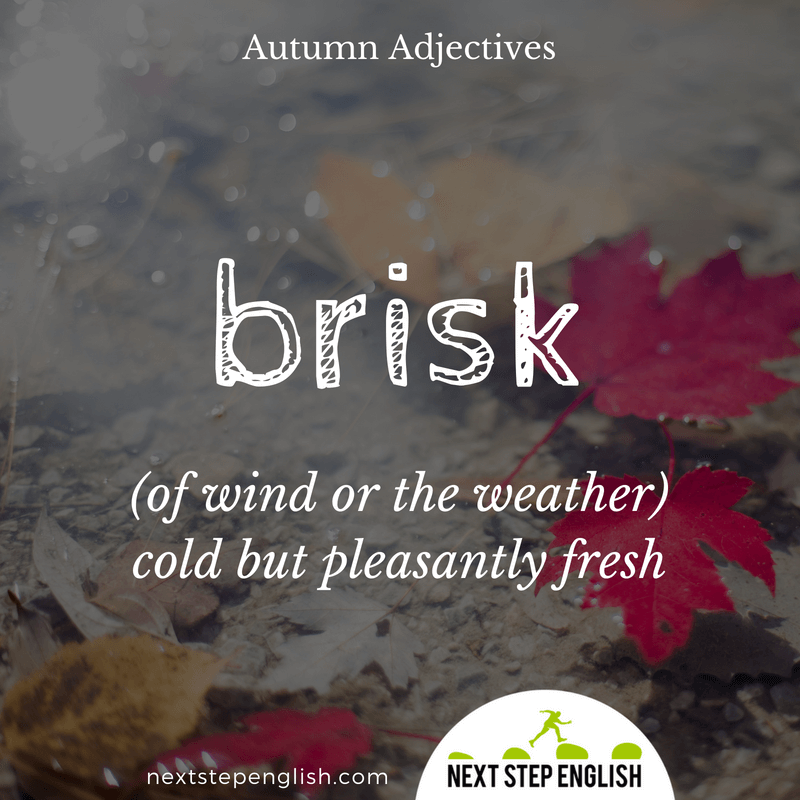 7-fall-words-autumn-adjectives-define-BRISK-meaning-Next-Step-English