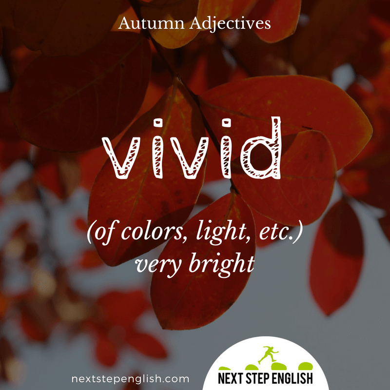 9-fall-words-autumn-adjectives-define-VIVID-meaning-Next-Step-English