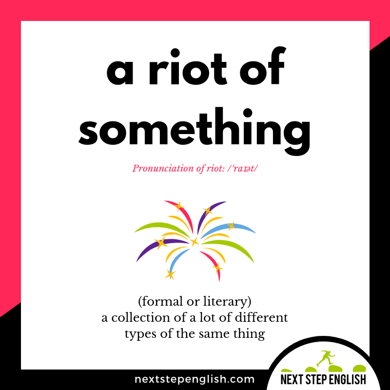 define-A-RIOT-OF-SOMETHING-idiom-meaning-Next-Step-English-visual-vocabulary