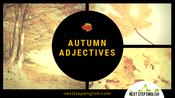 Fall Words: 17 Vocabulary Words to Describe Autumn