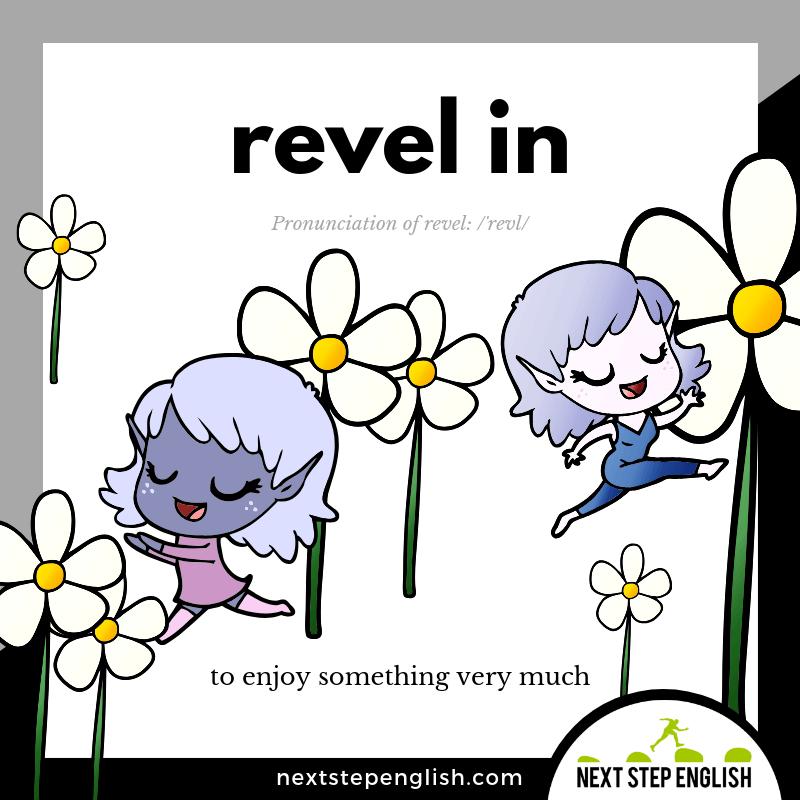 38-define-REVEL-IN-phrasal-verb-Next-Step-English-vocabulary
