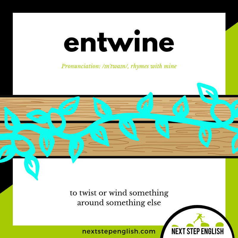 define-ENTWINE-meaning-Next-Step-English-vocabulary-star-spangled-banner