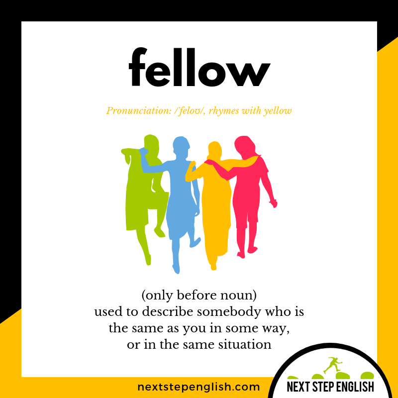 define-FELLOW-meaning-Next-Step-English-vocabulary
