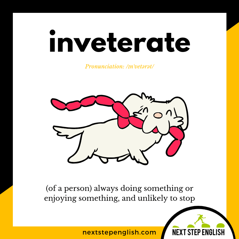 define-INVETERATE-meaning-Next-Step-English-vocabulary