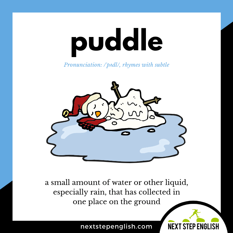 define-PUDDLE-meaning-Next-Step-English-vocabulary