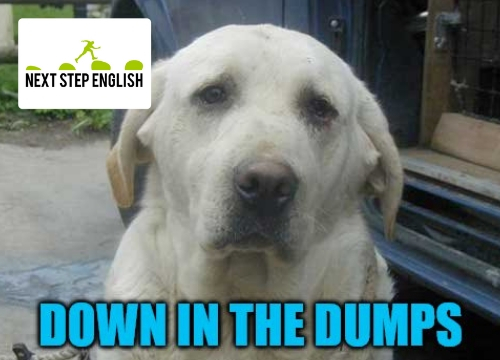 ESL Word of the Day: DOWN IN THE DUMPS (Next Step English)