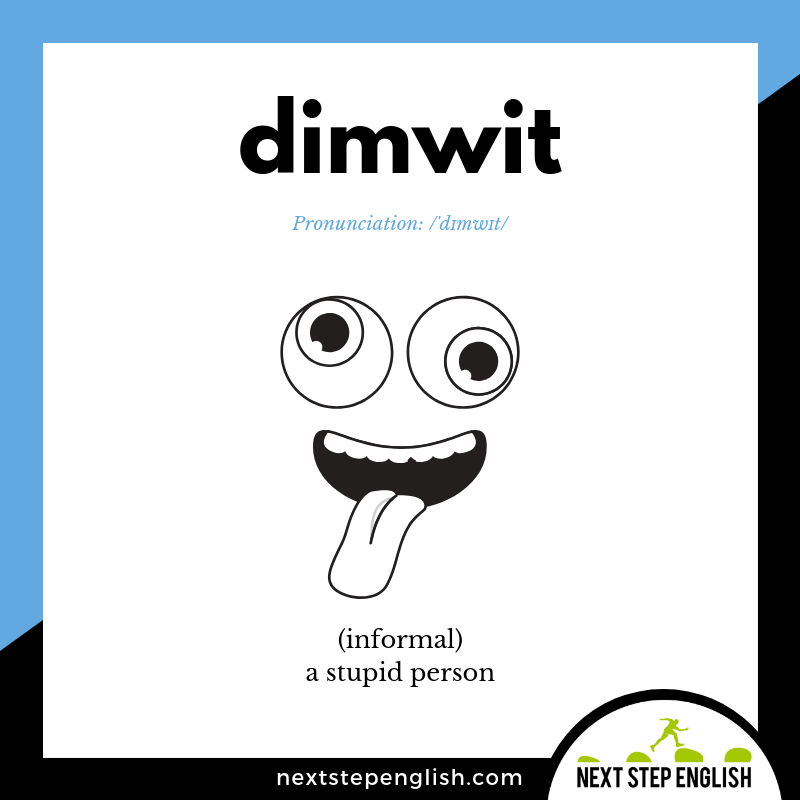 DIMWIT meaning (Next Step English visual vocabulary card)