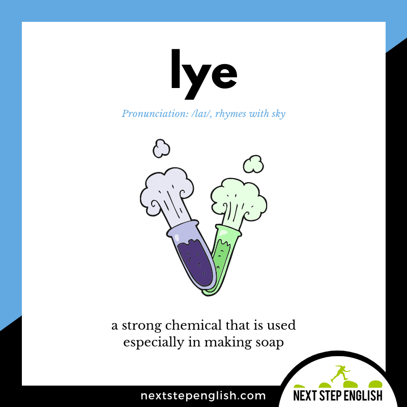 LYE meaning (Next Step English visual vocabulary card)