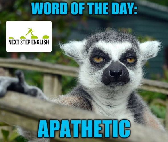 Word of the Day: APATHETIC