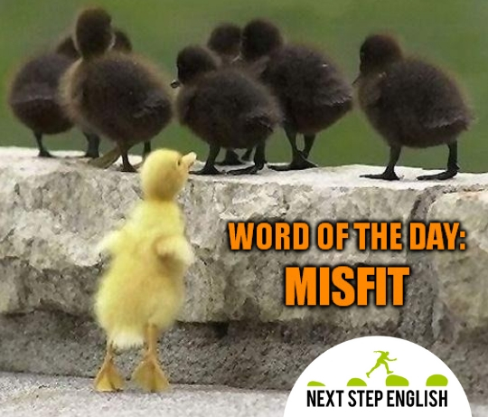 word-of-the-day-misfit-meaning