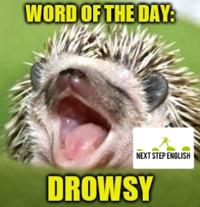 English Word of the Day: DROWSY