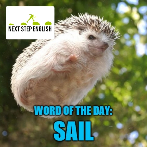 sail-meaning-word-of-the-day