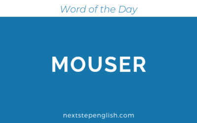 Mouser | Meaning + Examples