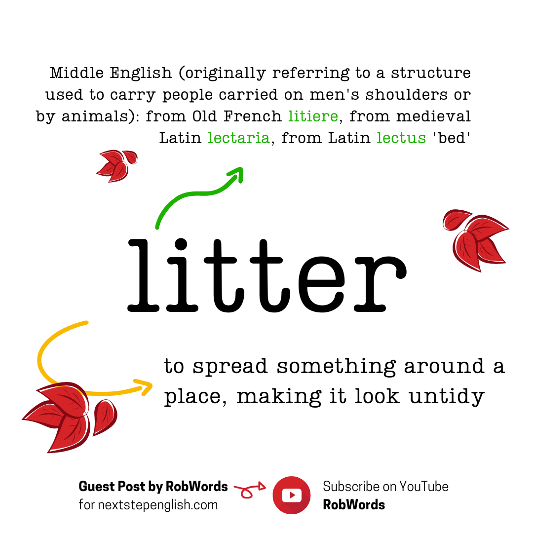 litter-meaning
